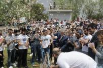 BAHAR ŞENLIKLERI - Şenlik Ateşi 4 Yıl Sonra Tekrar Alevlendi