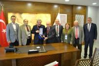 TÜRKIYE MILLI OLIMPIYAT KOMITESI - Türkiye Milli Olimpiyat Komitesinden (TMOK) Başkan Vergili'ye Ziyaret