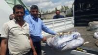 İNCİ KEFALİ - Van'da 7 Torba Kaçak Avlanmış İnci Kefali Ele Geçirildi