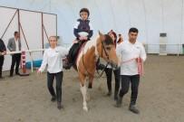 MEHMET FEVZİ DÖNMEZ - Elazığ'da Atla Terapi Dönemi