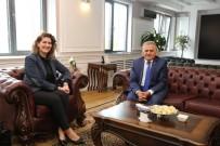 REFERANS - Mimarlar Odası Başkanı Kayseri'de