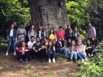 SıNıF ÖĞRETMENLIĞI - Öğretmen Adayları 4113 Yaşındaki Porsuk Ağacını Tanıttı