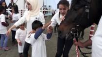 MEHMET FEVZİ DÖNMEZ - TJK, Elazığ'da Atla Terapi Merkezi Açtı