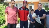 MISYON - Balıkesir'de İtfaiyenin Yolda Bulduğu Yaralı Martı Tedaviye Alındı