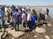 SELAHATTIN EYYUBI - Diyarbakır'da Serinlemek İçin Baraj Gölüne Giren İki Çocuk Boğuldu