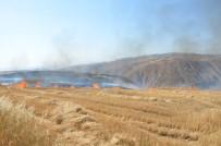 ENDEMIK - Siirt'te 20 Anız Yangınına Müdahale Edildi