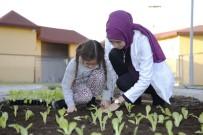 EKOLOJIK - Ekolojik Kreş'te Yaz Okulu Heyecanı