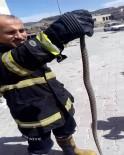 İkinci Katın Balkonundaki Yılanı İtfaiye Ekipleri Yakaladı