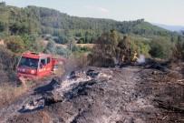 ORMANA - Ula'da 2 Hektar Alan Yandı
