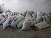 İNCİ KEFALİ - Van'da Kaçak Avlanmış İnci Kefali Balığı Ele Geçirildi