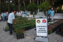 AVSALLAR - Alanya Belediyesi, 21 Mezarlıkta 42 Bin Çiçek Dağıtacak