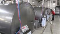 BAŞPıNAR - Diş Hekimi Devlet Desteğiyle Süt İşleme Tesisi Kurdu