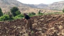 DERECIK - Irak Sınırındaki Vatandaşlar Operasyonlardan Memnun