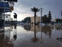 VENEDIK - İsrail Sele Teslim Oldu