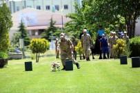 UZMAN JANDARMA - Nevşehir'de Jandarmanın 179.Kuruluş Yıl Dönümü Kutlandı