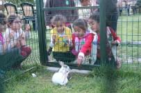 Ardahan'da Yetim Çocuklar İçin İftar Programı Düzenlendi