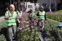 NOSTALJI - Bağcılar'da Park Ve Bahçelere Kadın Eli Değdi