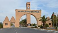 YAZ OKULU - HRÜ Yaz Okullarında Online Başvuru Dönemi