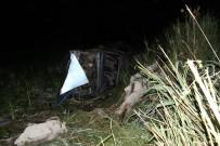 YABAN DOMUZU - Konya'da Yaban Domuzu Kazaya Sebep Oldu Açıklaması 5 Yaralı