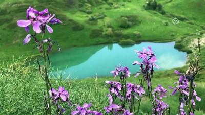Kop Dağı'ndaki Heyelan Gölü Turizme Kazandırılacak