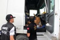 KALABA - Nevşehir Polisi Uyuşturucuya Geçit Vermedi Açıklaması 2 Buçuk Kilo Bonzai Ele Geçirildi