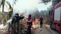 ULUDAĞ - Bursa'da Yangın