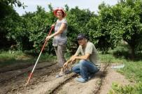 SOLUCAN GÜBRESİ - Hollanda'lı Diane, Türkiye'de Organik Tarım Yapıyor
