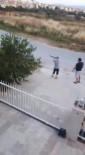 Köpeğe Pompalı Tüfekle Ateş Açan Kişi Ve Oğlu Serbest Bırakıldı