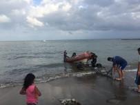Akrabalarıyla Serinlemek İçin Denize Giren Bir Kişi Kayboldu