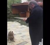 ENERJİ VE TABİİ KAYNAKLAR BAKANI - Erdoğan Küçük Köpeği Böyle Besledi