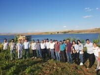 Yıldırım'dan Sur'un Köylerine Çıkarma