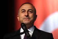 FIRAT KALKANI - Dışişleri Bakanı'ndan 'Menbiç' Açıklaması