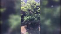 BAYRAM ZİYARETİ - İzmir'de Gölette Kaybolan Kişinin Cesedine Ulaşıldı