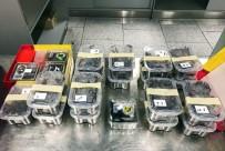 VERGİ KAÇAKÇILIĞI - Almanya'da Bir Yolcunun Bagajında 22 Tarantula Çıktı