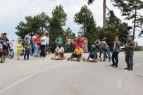 Bursa'da Tahta Yarış Arabaları İle Ralli Heyecanı