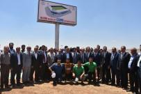 MEHMET AKTAŞ - Cizre'ye 10 Bin 500 Kişilik Stadyum Yapılıyor