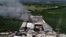 GÜNCELLEME - Bursa'da Soğuk Hava Deposunda Yangın