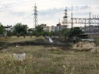 TÜRKIYE ELEKTRIK İLETIM - Milas'ta Otluk Arazide Yangın
