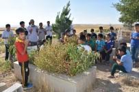 KOZLUCA - PKK'lı Teröristlerin Katlettiği Köylülerin Yakınlarından Tepki