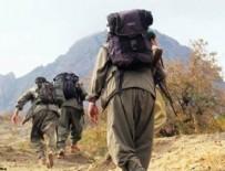 PKK - PKK nereye kaçıyor?