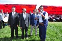 HÜSEYIN DEMIR - Tarihi Kırkpınar Başpehlivanları Sorgun Er Meydanında Boy Gösterdiler