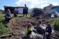 ŞENYAYLA - Terörden arındırılan yaylalarda halaylı günler