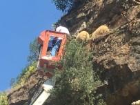 BEYTÜŞŞEBAP - Beytüşşebap'ta Koyun Kurtarma Operasyonu