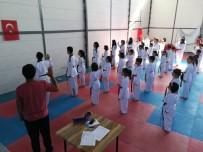 Çaycumalı Taekwondocular Kuşak Atladı
