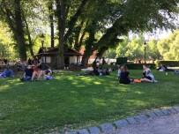 ORTA AVRUPA - İsveç, 1952 Yılından Beri En Sıcak Mayıs Ayını Yaşıyor