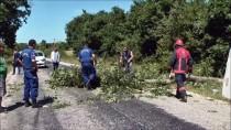 SILIVRI DEVLET HASTANESI - Silivri'de Trafik Kazası Açıklaması 2 Yaralı