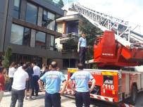 CANLI YAYIN - Başkent'te Sahibinden Kaçıp Binanın 2. Katına Çıkan Kediyi İtfaiye Kurtardı