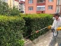DÜNYA SAĞLıK ÖRGÜTÜ - Bilecik'te Park Ve Bahçelere Kapsamlı İlaçlama