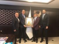 TÜRKIYE VOLEYBOL FEDERASYONU - Bozüyük Belediyesi İdman Yurdu Spor Kulübü'nden Voleybol Federasyonu'na Ziyaret