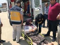 İznik'te Baltalı Saldırı